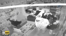 Video:konyanin-saskin-hirsizlari-kamerada
