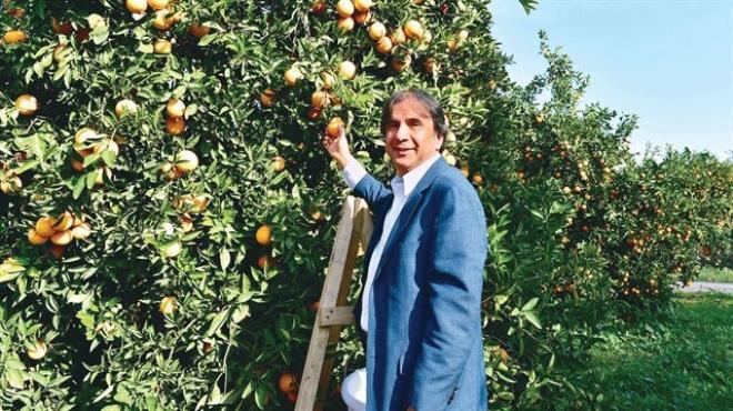 Finike portakalına  ŞOK  destek