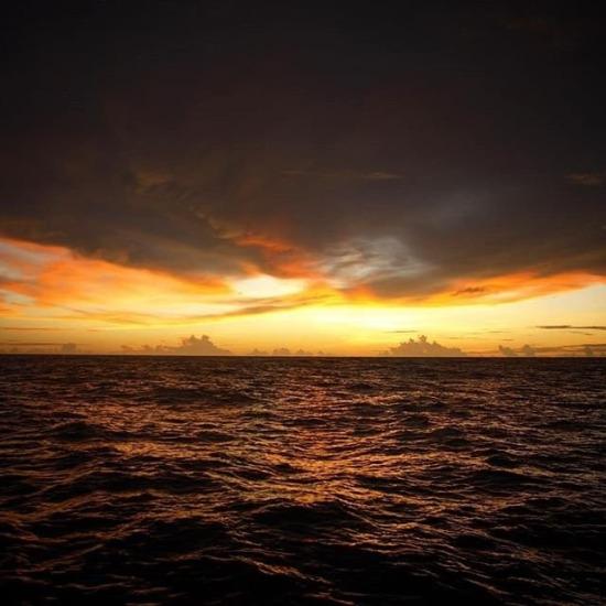 Pasifik'te bir seyahatten