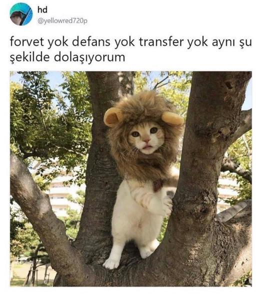 Galatasaray'ın son hali