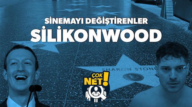 Holywood'u tahtından eden dahiler: Silikonwood