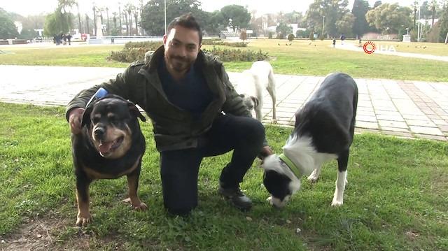 Köpek gezdirerek saatte 150 lira kazanıyorlar