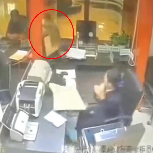 Tavandan düşen kedi banka çalışanına hayatının şokunu yaşattı